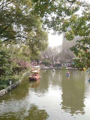 WeChat Image_20190325140802.jpg