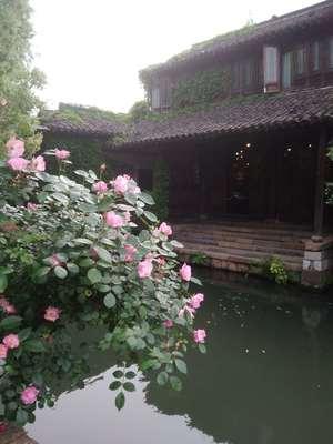 WeChat Image_20190429101103.jpg